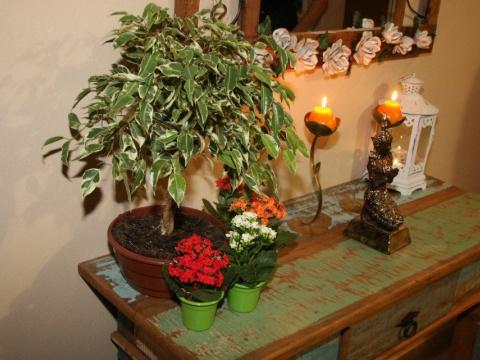 Nossos Ambientes - Hipnose Alta Costura e Spa para Noivas e Noivos - Campinas - SP - 21